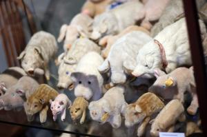 Pig soft toys at the Stuttgart Pig Museum