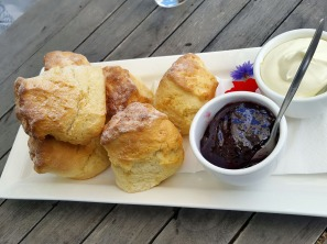 Scones from the cafe, Heronswood