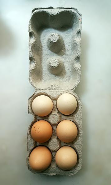 Happy Hens Packaging